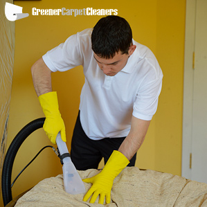Professional Upholstery Cleaner Cleansing a Sofa
